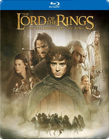 Lord of the Rings The Fellowship of the Ring 2001 Dual Audio Hindi 720p BluRay 950mb