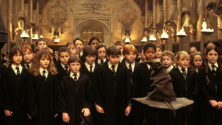 Fan Filme de Harry Potter para assistir neste final de semana!