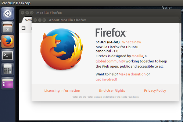Mozila Firefox for Ubuntu canonical-1.0