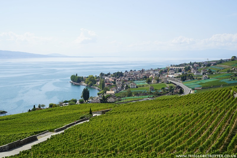 Lavaux Vineyards in Switzerland