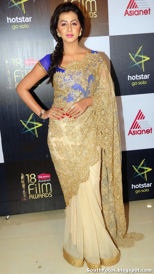 Nikki Galrani Hot in Saree Wallpaper