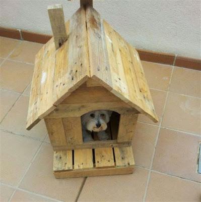 casa para perro con material reciclado
