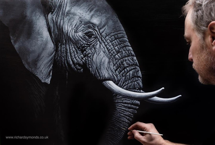 10-Elephant-Richard-Symonds-www-designstack-co