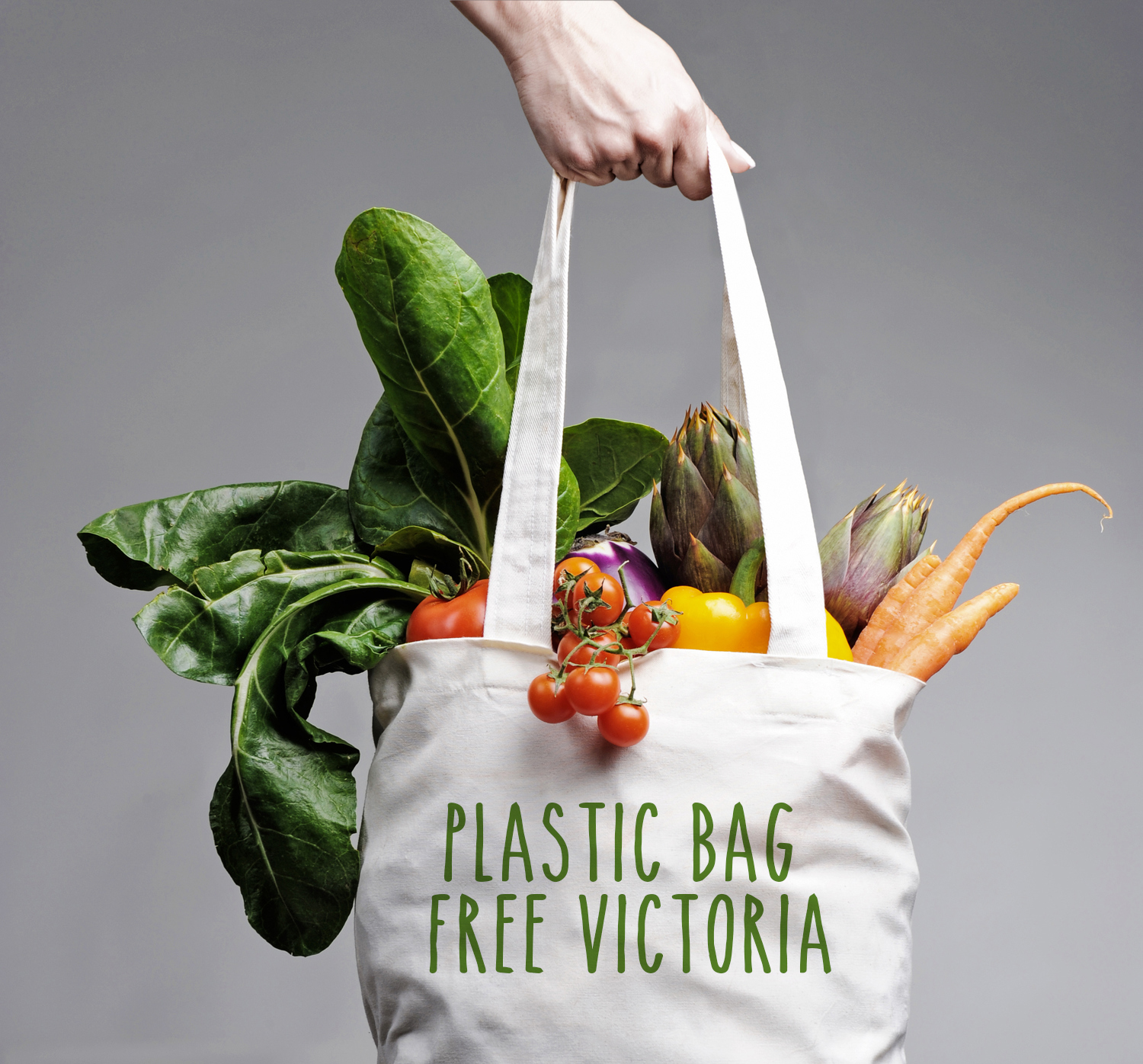 Plastic Bag Free Victoria - my foray into activism part 1