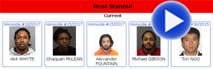 torontos most wanted