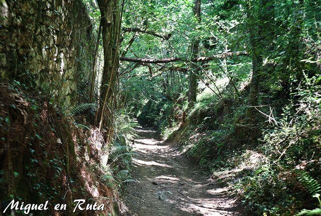 Senderos-Cangas-Onis-Asturias