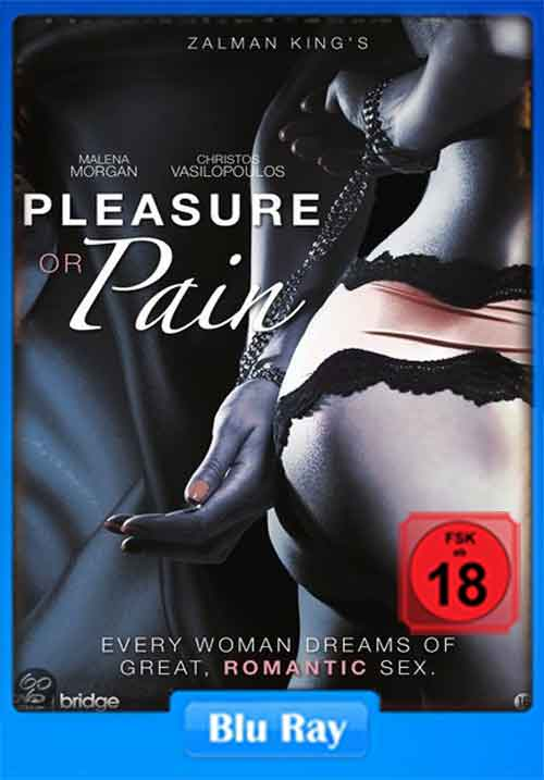18 Pleasure Or Pain 2013 130Mb Hevc Bluray Unrated-6514