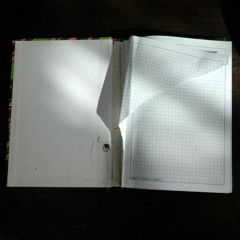 Cómo reciclar un cuaderno para grandes proyectos