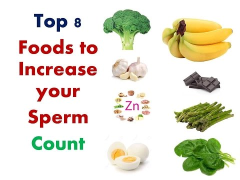 Count food increase sperm
