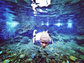 Seaworld Ancol Jakarta