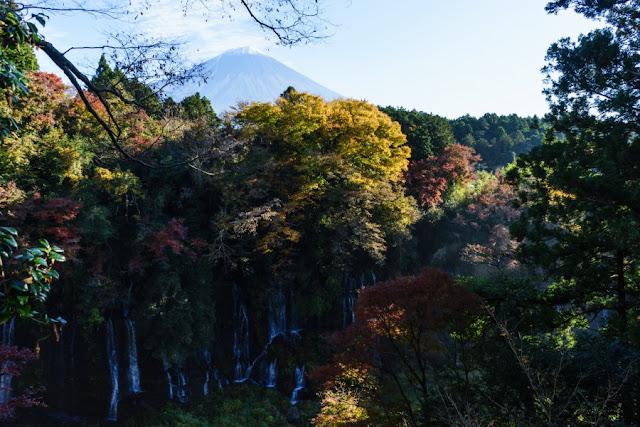紅葉と富士山~白糸の滝(静岡)