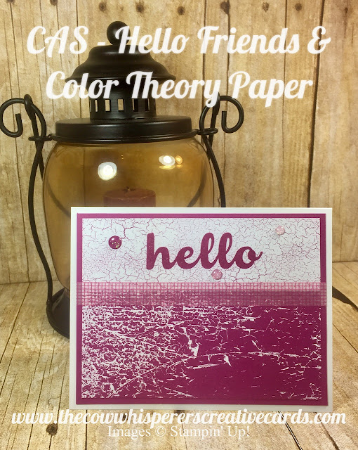 Hello Friiend, Color Theory Paper, Berry Burst, Clean and Simple, CAS, Card, Stampin Up
