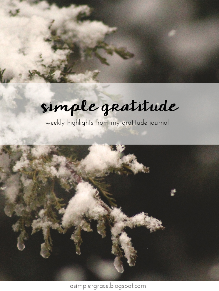 Today I'm sharing my #gratefulheart on the blog with @embergreyblog #gratitude #feelingthankful - Simple Gratitude | 56 - A Simpler Grace