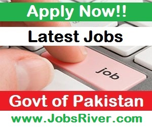 Daily Govt Jobs in Pakistan