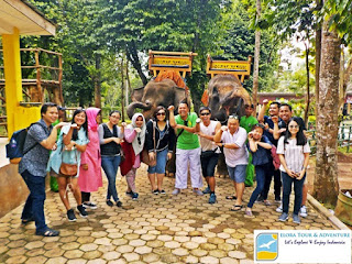 City Tour ke Kandang Gajah Elora Tour & Adventure