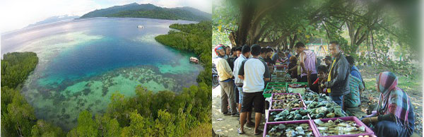 Keindahan Pulau Kasiruta (Pulau Bacan)