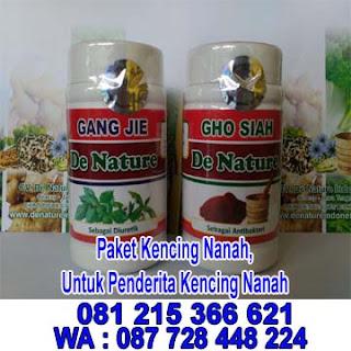 Paket kencing Nanah