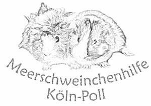 http://www.meerschweinchen-poll.de/