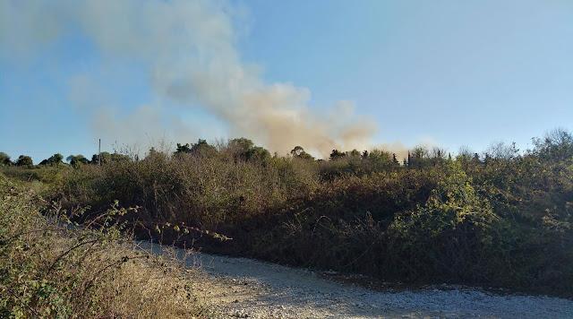 Πρέβεζα: Μικρής έκτασης φωτιά ανάμεσα από Μύτικα και αρχαία Νικόπολη