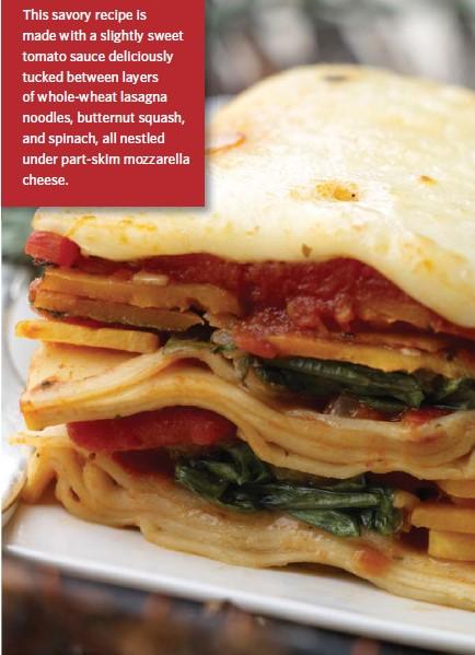 Squish Squash Lasagna Recipe