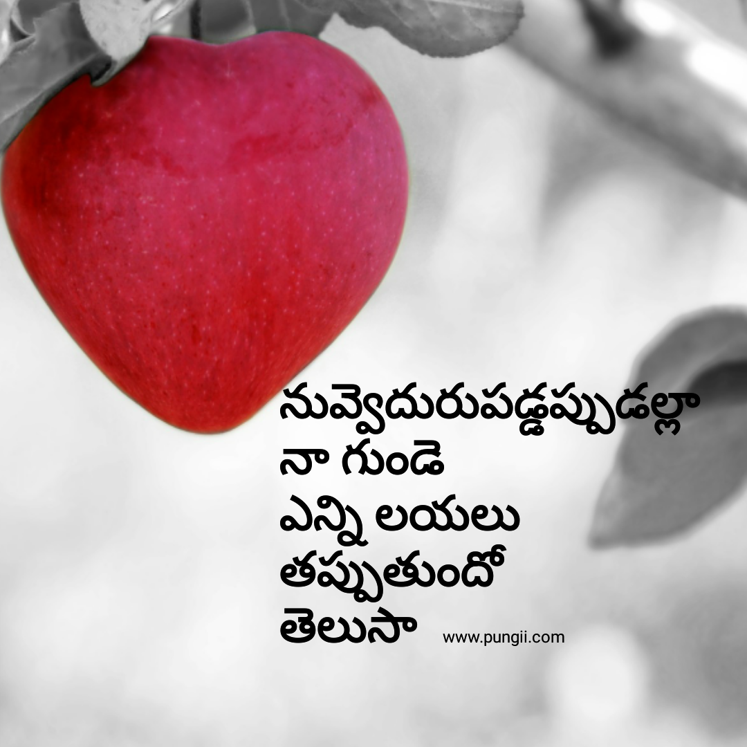 Heart Touching Love Quotes Deep Telugu Love Quotes Heart Touching Love Quotes In Telugu  Pungii