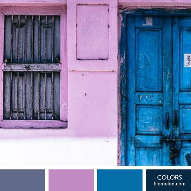 variedad_en_color_color_65