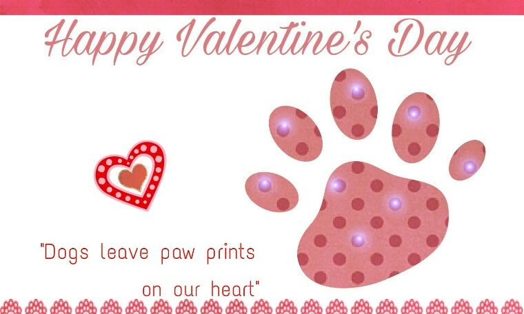 A 3 x 5 card Dogs leave paw prints on our heart handmade valentine card