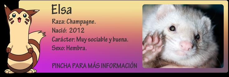 http://almaexoticos.blogspot.com.es/2014/11/elsa-la-hermosura-en-adopcion.html