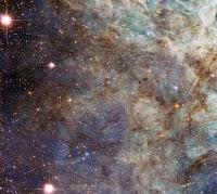 Tarantula Nebula (30 Doradus)