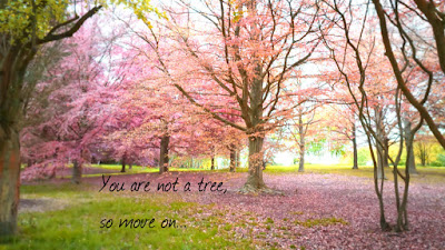 You are not a tree, so move on...
