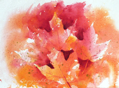 Autumn leaves from the maple trees