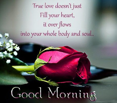 Sexy Good Morning Quotes for Him: true love does't just fill your heart, it over flows into your whole body and soul.