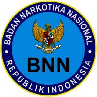 CPNS BNN Pusat