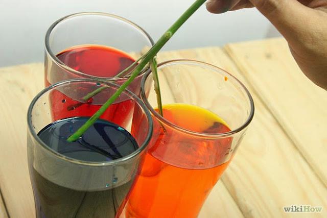 màu thực phẩm các loại pha với nước