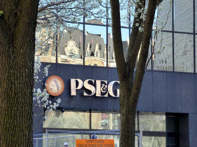 "Image result for ""pse&g"" ""placenj"""