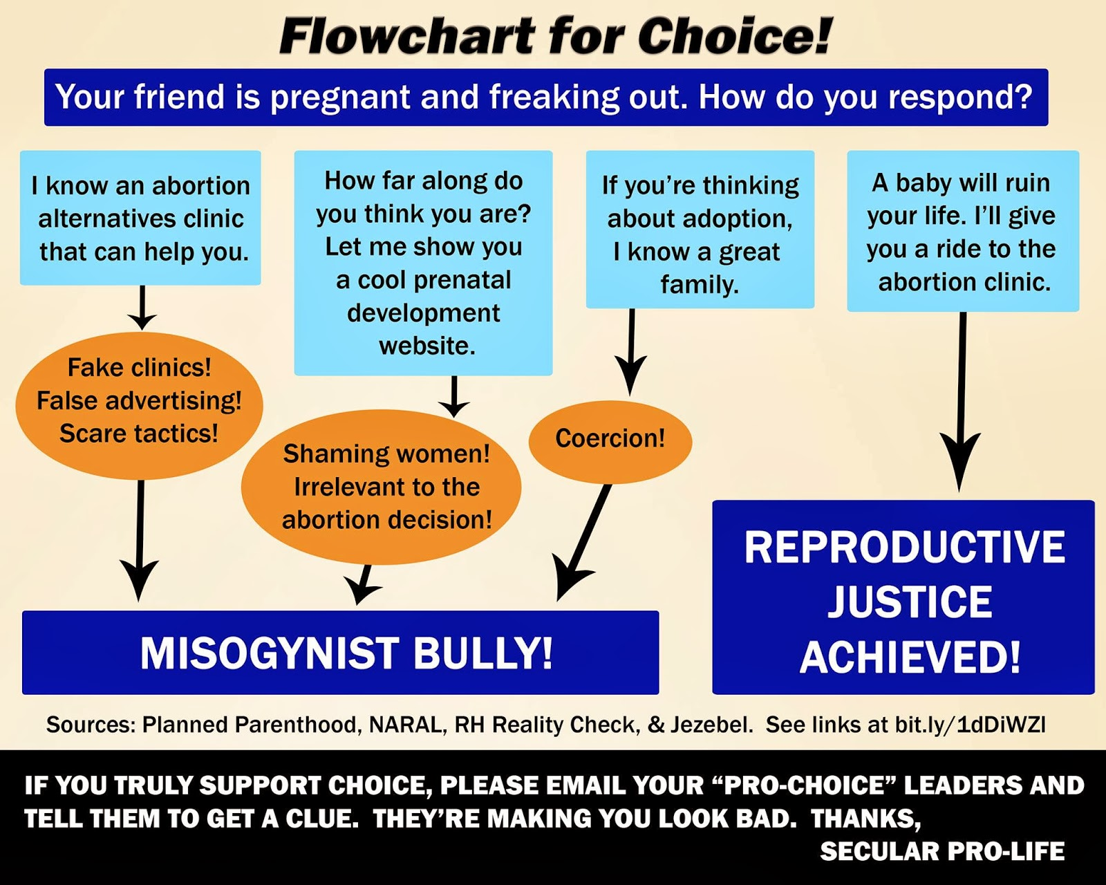 secular pro life perspectives 2013 the year s top graphics