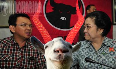 PDIP Retak! Ketua PDIP Baru Sadar Kelicikan AHOK Mengadu Domba Semua Kader PDIP