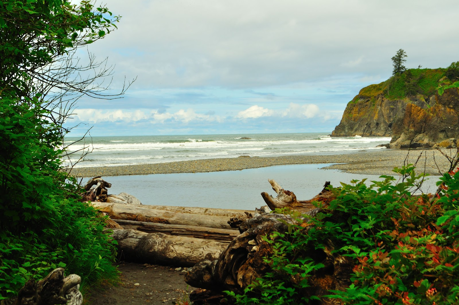 Travels Trails and Tales PNW Road Trip Day 8 Ruby Beach