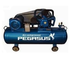 Máy nén khí Pegasus TM-W-1.0/8-500L