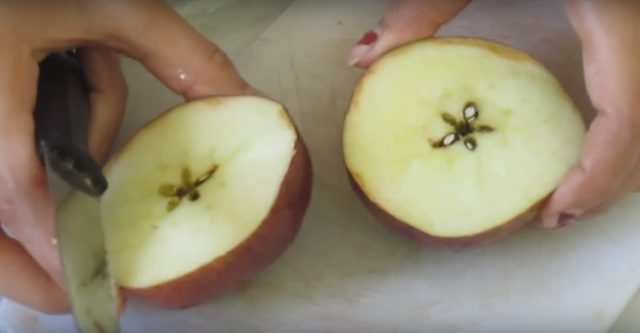 WHAT HAPPENS WHEN YOU EAT APPLE SEEDS?