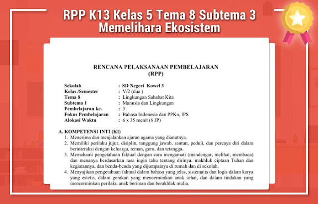 File Pendidikan RPP K13 Kelas 5 Tema 8 Subtema 3 Memelihara Ekosistem