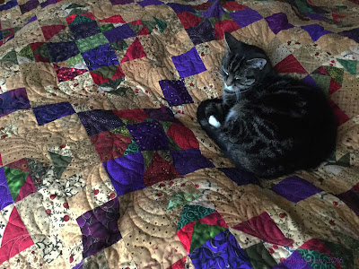 Easy Street Mystery Quilt , modelled by Suzi the cat