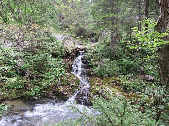 Potok wpływa do rzeki Hnilec.