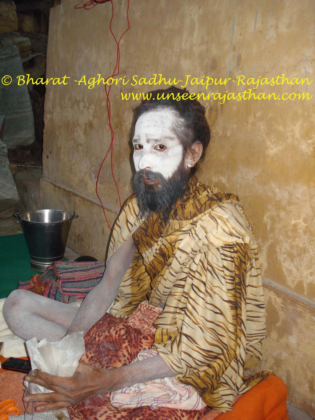 Jaipur City Daily: Aghori Baba-King of Indian Spirituality-Jaipur