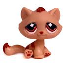 Littlest Pet Shop Special Kitten (#No #) Pet