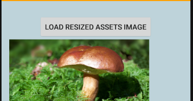 android - Picasso image resize example