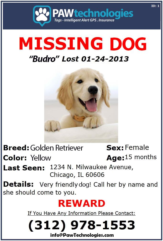 Barking from the Bayou - Lost Dog Flyer Examples