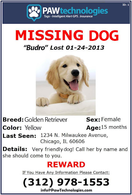 PAWtechnologies Missing Dog Flyer sample