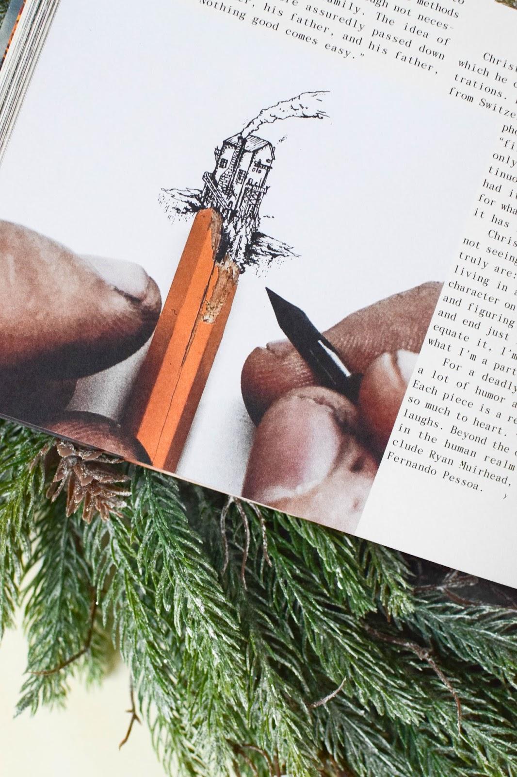 Buchtipp: Wildside - wunderschöner Bildband mit Tiefgang. Bücher, Inspiration