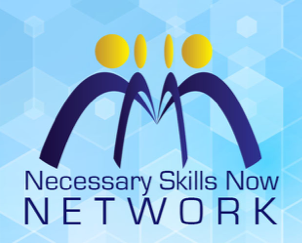 Newsletter from the NSN Network: Issue 1